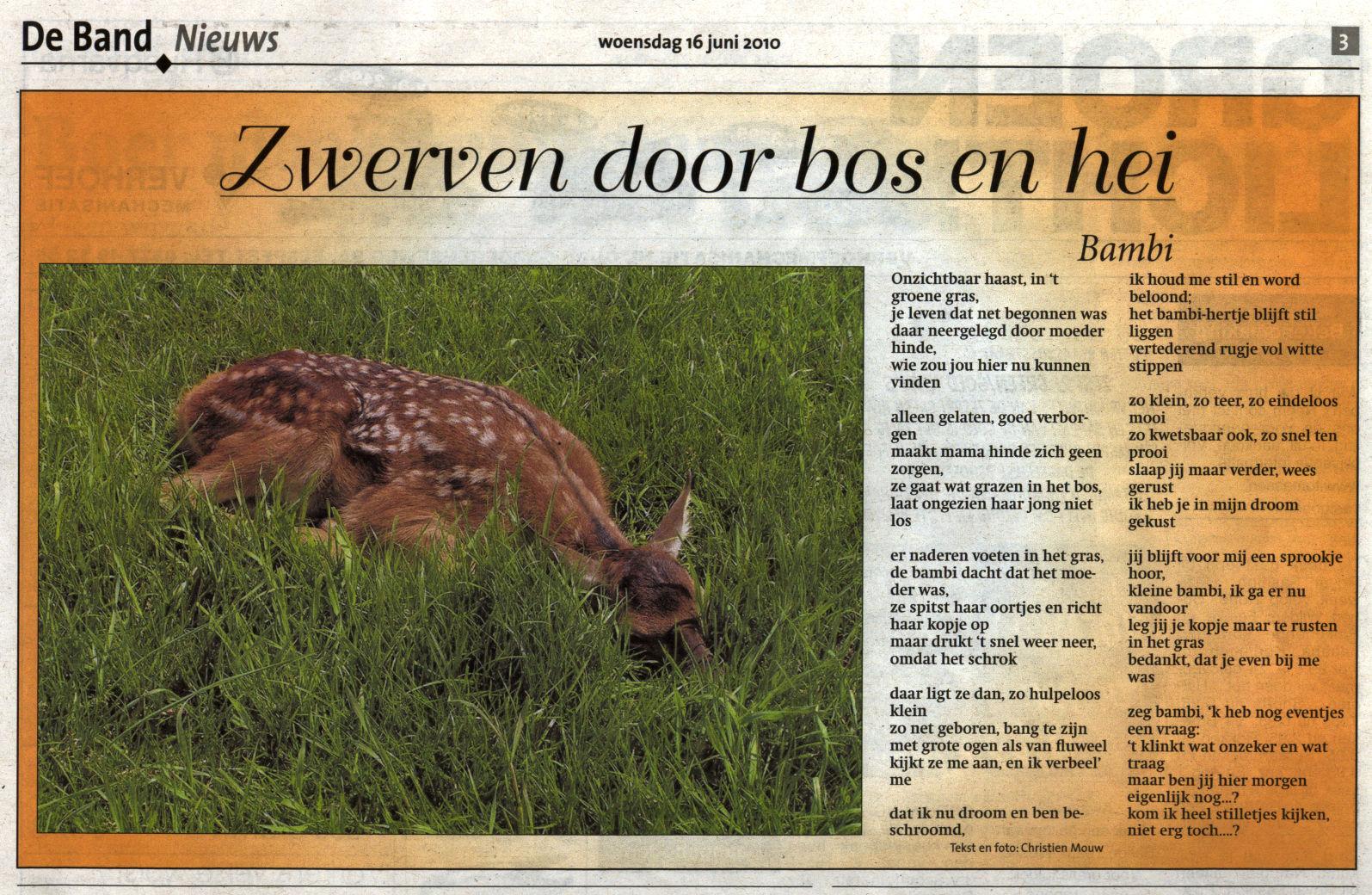scan versie krantenartikel